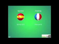 EM 2012: Spanien – Frankrig